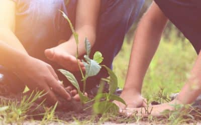 Le développement de l'enfant par Maria Montessori